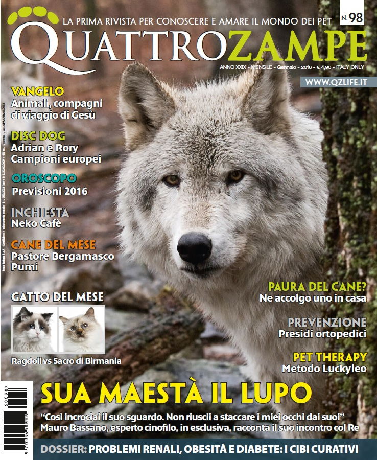 QuattroZampe, about Adrian and Rory, cover