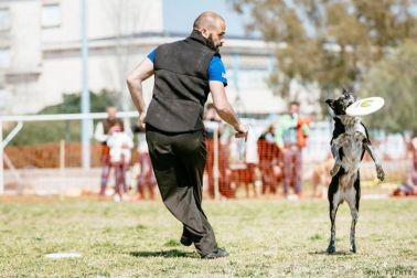 Adrian Stoica e RORY, Tarragona Easter Cup (USDDN, 25/26 march 2016)